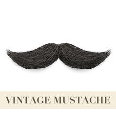 Realistic Black vintage curly mustache vector image