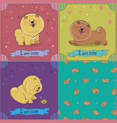 Set of cartoon dogs chow-chow vector
