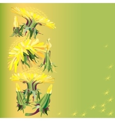 with dandelions vector image