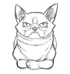 gloomy cartoon cat sitting vector image