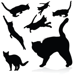 Cat black silhouettes vector