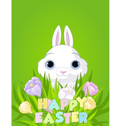 Easter bunny with crocus bouquet vector