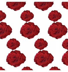 Watercolor Dark Red Rose pattern vector image vector image