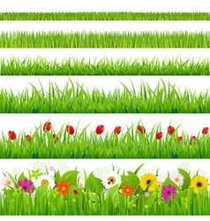 Big grass and flower set vector