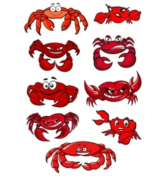 Set of red cartoon marine crabs vector