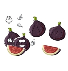 Ripe purple fig fruits cartoon character vector