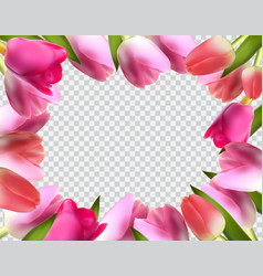 Beautiful pink realistic tulip frame vector