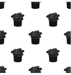 Flower in the pot icon in black style isolated on vector