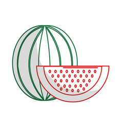 Silhouette delicious watermelon fruit with one vector