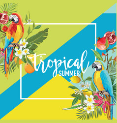 Tropical fruits flowers and parrot birds banner vector