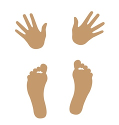 Hand and foot silhouette vector