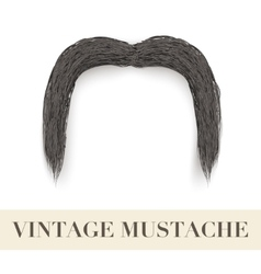 Realistic Black vintage drooping mustache vector image