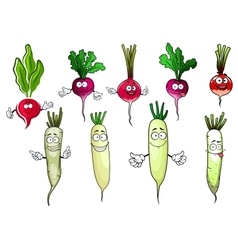Red radish and white daikon vegetables vector
