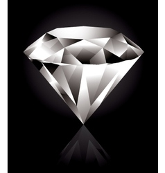 shiny diamond vector image