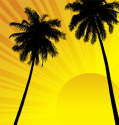 Coconut trees vector