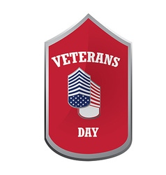 Veterans day vector