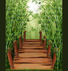 bamboo forest with wooden bridge vector image