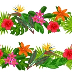 Seamless horizontal borders with tropical plants vector