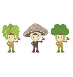 vegetable head child character lettuce vector image vector image