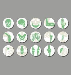 Orthopedic and spine icons vector