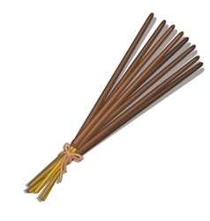 Bunch of incense sticks on white background vector image
