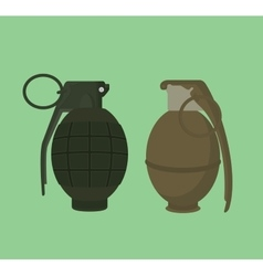 grenade isolated with green vector image