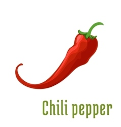 Hot red chili or cayenne pepper icon vector