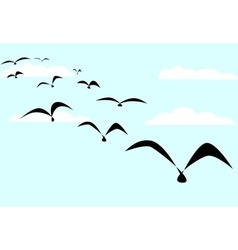The birds vector