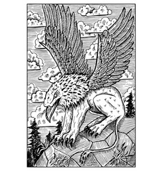 Gryphon engraved fantasy vector