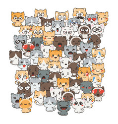 Ilustration with cats and dogs for design of vector