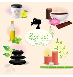 Set of spa elements vector