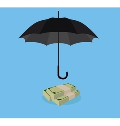 Money protection with umbrella cover stack of cash vector