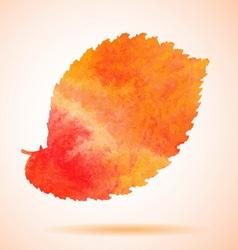 Orange watercolor painted elm tree leaf vector