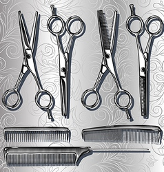 Tools for hairdresser scissors and combs vector image