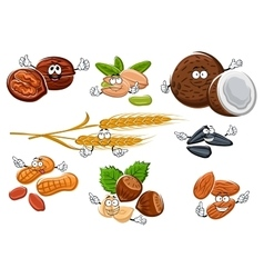 Isolated nuts seeds and cereal ears vector