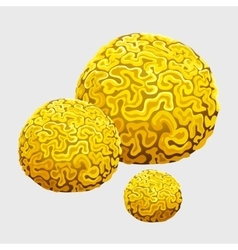 Yellow underwater sponge polyps in form of brains vector image