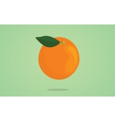 Orange fruit with leaf on the top and green vector