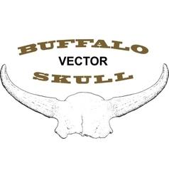 Old Buffalo Skull vector image vector image