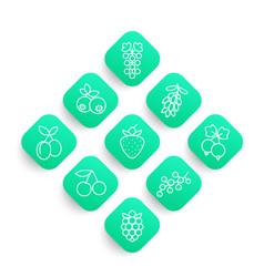 berries line icons set vector image
