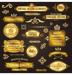 Vintage design elements golden vector image vector image