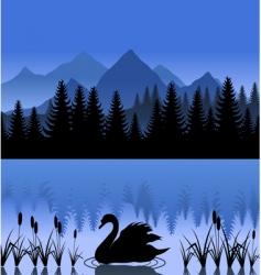 swan on lake vector image