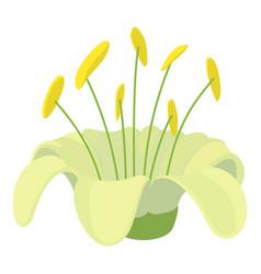 Beautiful flower icon cartoon style vector