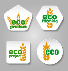 Eco grain product logo set vector
