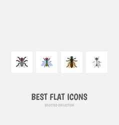 flat icon fly set of hum fly mosquito and other vector image