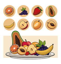 Fruits nutrition salad plate icons vector