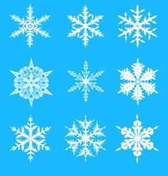 Snowflakes decorative set vector