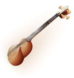 Classical iranian tar lute isolated on white vector