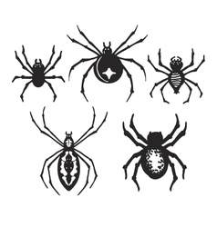 Halloween spiders vector