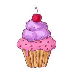 Cupcake with whipped cream and cherry vector image