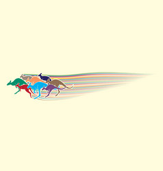 Group of kangaroo jumping graphic vector